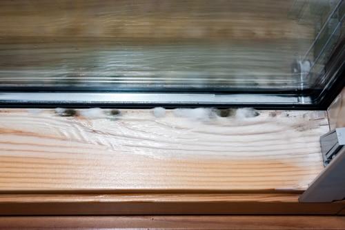 Begriffe: Schimmel am Fensterrand